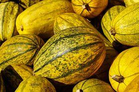 Dynia makaronowa – właściwości, zastosowanie, przepisy