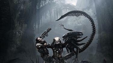 Aliens vs Predator: łatek nie będzie, bo nie są potrzebne