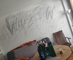 Zakopane. Kibice pomalowali ściany apartamentu