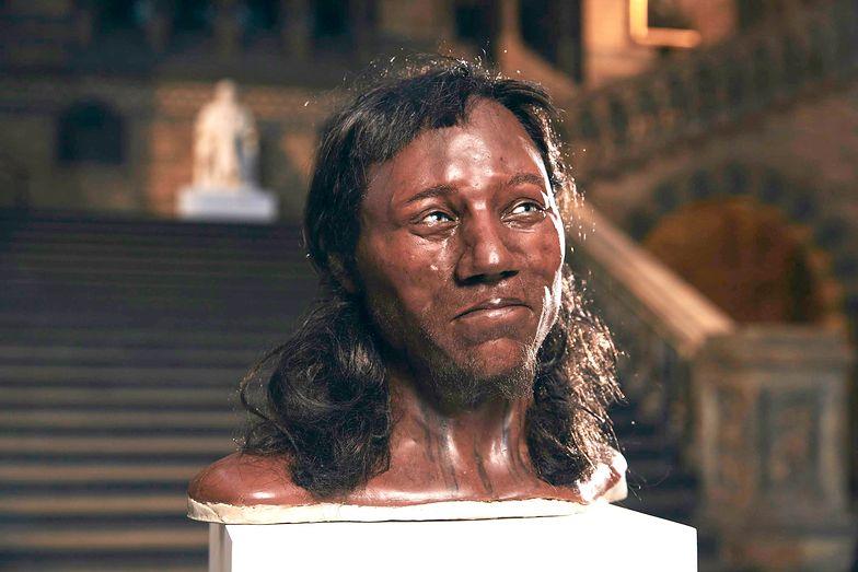 Odtworzyli twarz prehistorycznego Europejczyka. Miał ciemną skórę i niebieskie oczy