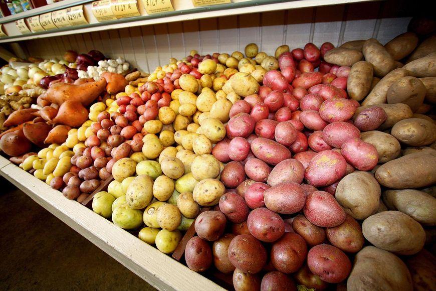 Najzdrowszy rodzaj ziemniaków