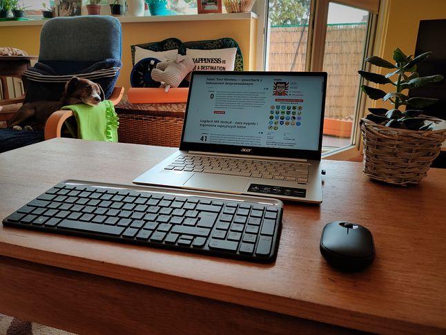 Cicha praca nie zaburzy snu zwierzaka domowego :)