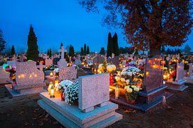 1 listopada cmentarze będą otwarte. Minister zdrowia apeluje o rozsądek (WIDEO)