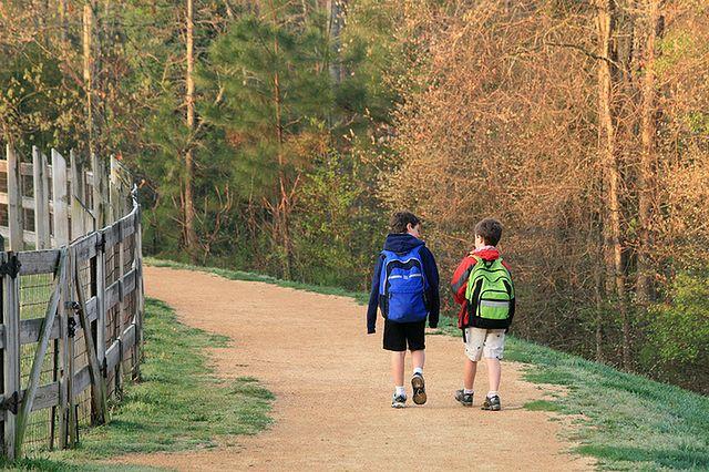 Spacerem do szkoły