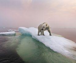 Pogoda szaleje. Na Arktyce rekord. Tak ciepło jeszcze nie było