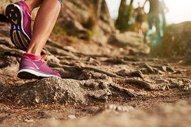 Trening cardio – zasady, sprzęt, ćwiczenia bez sprzętu, pulsometr, ile ćwiczyć, zalety treningu cardio