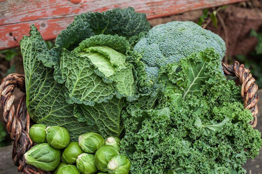 Kwas foliowy to substancja, która w największych dawkach występuje w zielonych warzywach liściastych