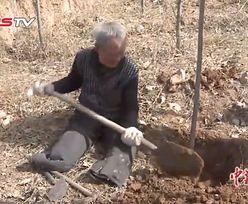 Niezwykłe poświęcenie mężczyzny bez nóg. Zasadził 17 tys. drzew