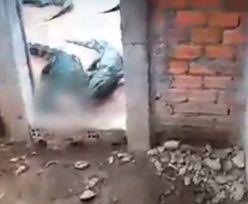 Krokodyle pożarły 2-letnią dziewczynkę. Została tylko czaszka