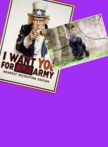 Netflix Cię potrzebuje - zagraj goryla w serialu o powodzi tysiąclecia