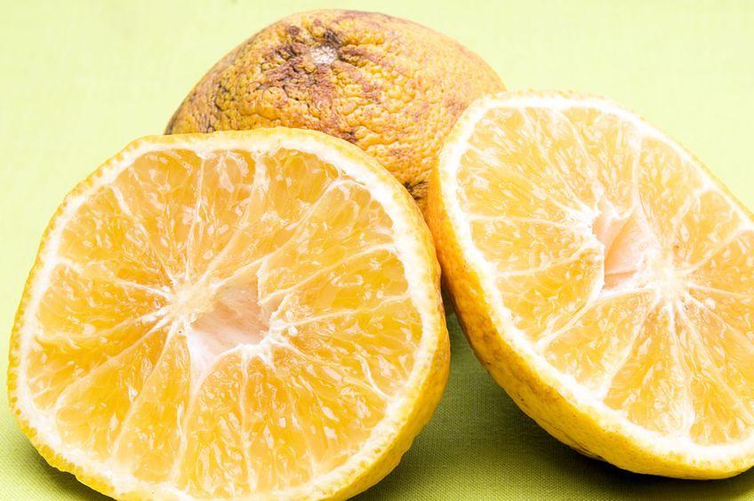 Cechy najlepszych owoców