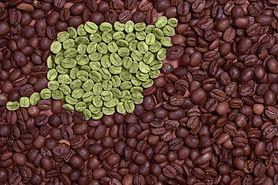 Zielona kawa - odchudzanie, choroby nowotworowe, przyrządzanie