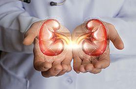 Nefrologia -  zadania, choroby nerek i układu moczowego, objawy chorób nerek, metody leczenia