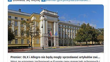 Maski i żele antybakteryjne decyzją rządu znikają z Allegro i OLX— wszystko przez rosnące ceny