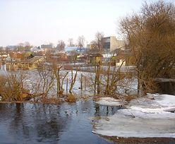 Alert IMGW. Groźne roztopy w wielu regionach Polski