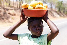 Problem głodu i otyłości na świecie