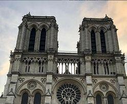 Ekolodzy są wściekli. Okazało się, czego będzie wymagała odbudowa Notre Dame