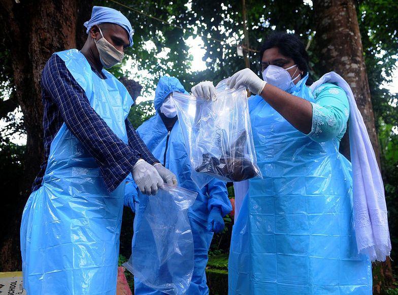 Przerażenie w Indiach. Ten wirus wywołuje zgony u 70 proc. chorych