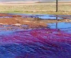 Nietypowy wypadek. Okolicę zalała rzeka czerwonego wina