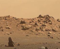 Mars w 4K. NASA chwali się nagraniem. Wybrali same najlepsze ujęcia