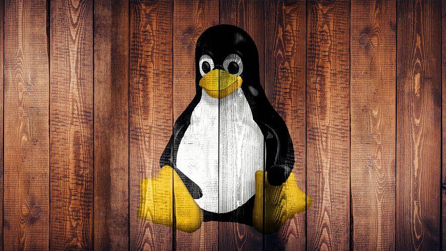 """Linux 5.8 jest """"wielki"""", fot. Pixabay"""