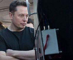 """Elon Musk odpowiedział mistrzowi UFC. """"Przepraszam za opóźnienie"""""""