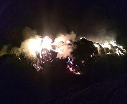 Strażak i 16-latek wywoływali pożary
