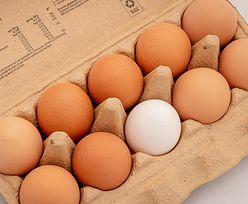 GIS ostrzega. Sprawdź numery na jajkach. Kolejne partie z Salmonellą