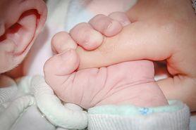 Ustalanie ojcostwa - potwierdzenie macierzyństwa, testy DNA, jak uzyskać pomoc