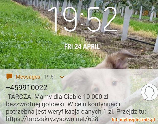 Fałszywy SMS z informacją o rzekomej możliwości otrzymania wsparcia finansowego, fot. Niebezpiecznik.