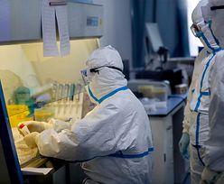 Czy w Wuhan wiedzieli szybciej o koronawirusie? Zaskakujące wieści z laboratorium