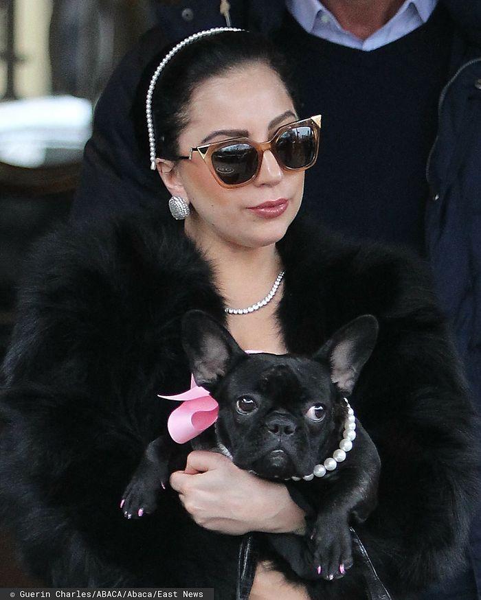 Lady Gaga i jej piesek