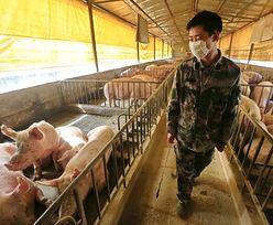 """Niepokojące odkrycie w Chinach. Mutacje wirusa zostały """"stworzone przez człowieka"""""""