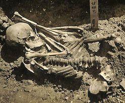Najstarsza ofiara rekina. Szkielet ma kilka tysięcy lat
