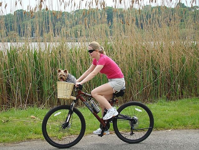 Wybierz się na przejażdżkę rowerową