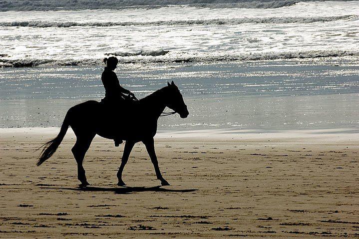 Jeździectwo - przejażdżka konna po plaży