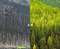 FaceApp inspiracją dla Greenpeace. Organizacja pokazuje jak Ziemia zmieni się przez ocieplenie klimatu
