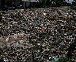 Najwięksi truciciele świata. 8 krajów odpowiada za 64 proc. śmieci