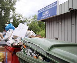 Wywóz śmieci. W 2019 opłaty wzrosły o ponad 30 proc. Nie tylko to zdrożało