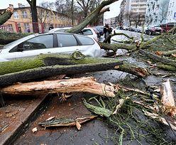 Powalone drzewa, zniszczone auta. Cyklon nad Polską