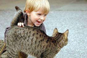 Zwierzak dla dziecka
