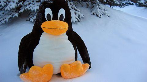 Nowy Linux może gwałtownie przyspieszyć sieci i uruchamianie programów