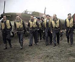 Angielki za nimi szalały, Anglicy już trochę mniej. Czego dokonali Polacy w Bitwie o Anglię?