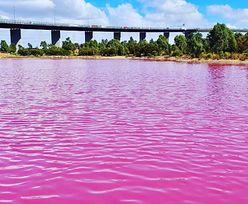 Odcienie różu. Jest na świecie jezioro o takim kolorze