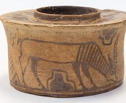 """4000-letnie """"naczynie na szczoteczki"""". Anglik nawet nie wiedział, co trzyma w domu"""
