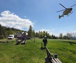 Śmierć rowerzysty na Dolnym Śląsku. Dojazd był zastawiony autami