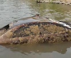 Makabryczne odkrycie w rzece. Sprawa sprzed 12 lat rozwiązana przypadkiem