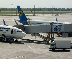 Makabryczne odkrycie w samolocie. 38 martwych szczeniąt