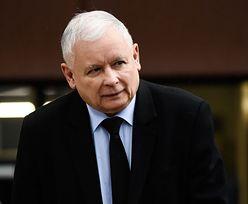 Jarosław Kaczyński zaciera ręce. Pojawił się nowy sondaż