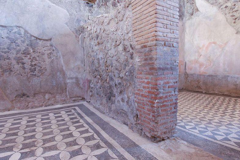 Turystka ukradła fragment mozaiki z Pompejów. Została zatrzymana
